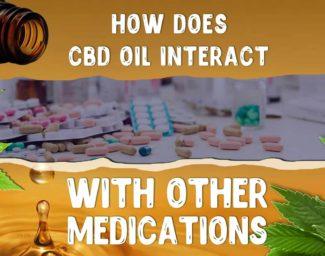 cbd-interactions