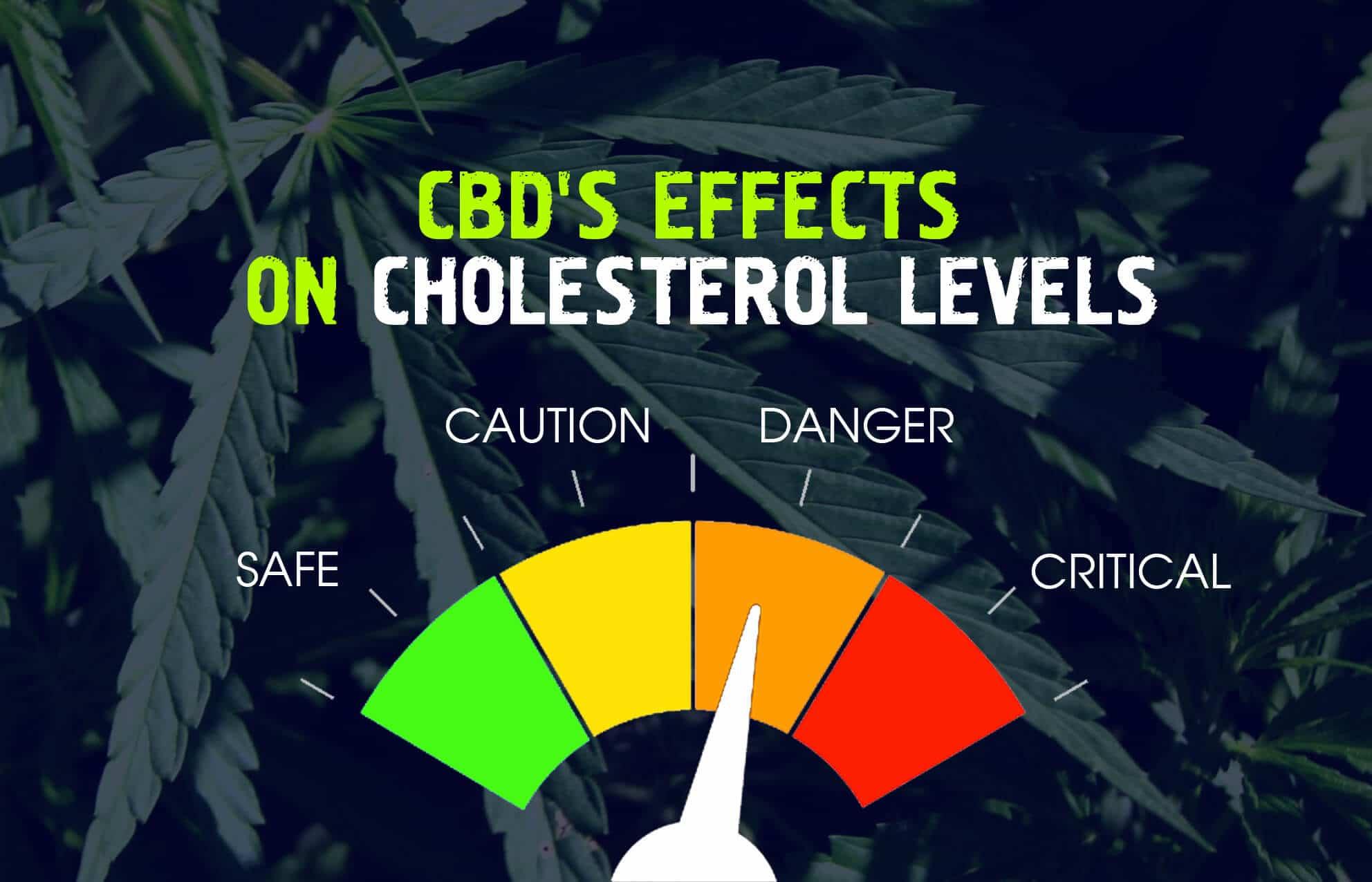 CBD's Effects on Cholesterol Levels