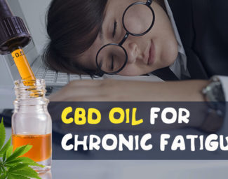 cbd-oil-for-chronic-fatigue-mini
