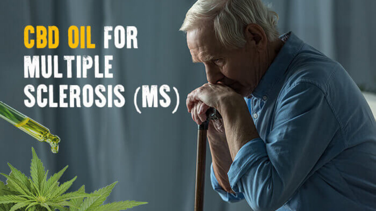 CBD is effective in managing pain caused by multiple sclerosis