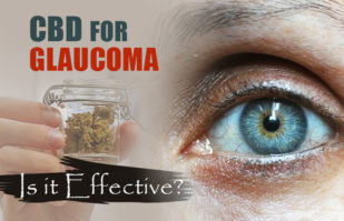 CBD Oil for Glaucoma