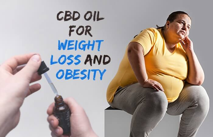 cbd-oil-for-weight-loss-and-obesity