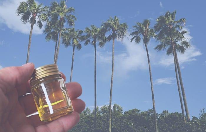 cbd-oil-in-florida