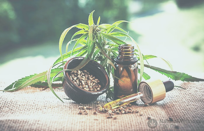 difference-between-cbd-oil-and-hemp-oil