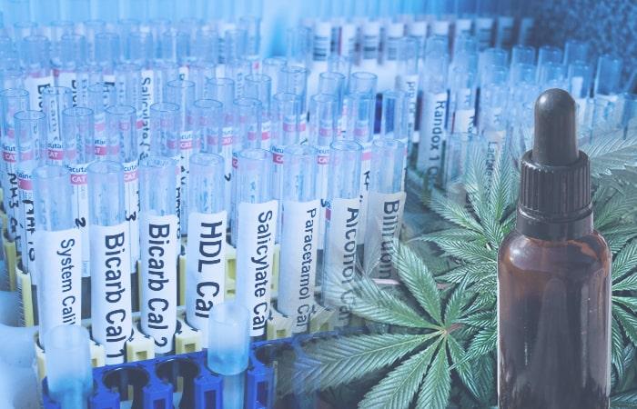 cbd-show-up-on-drug-test