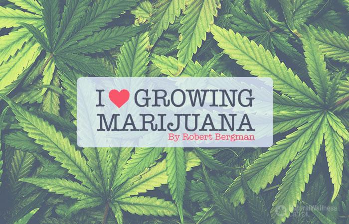 i-love-growing-marijuana