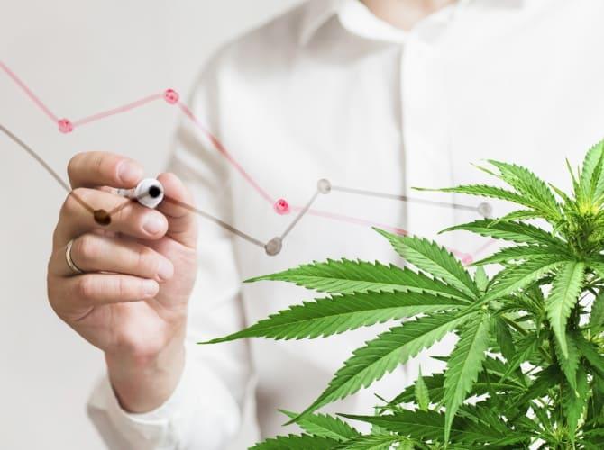 cannabis-graphic